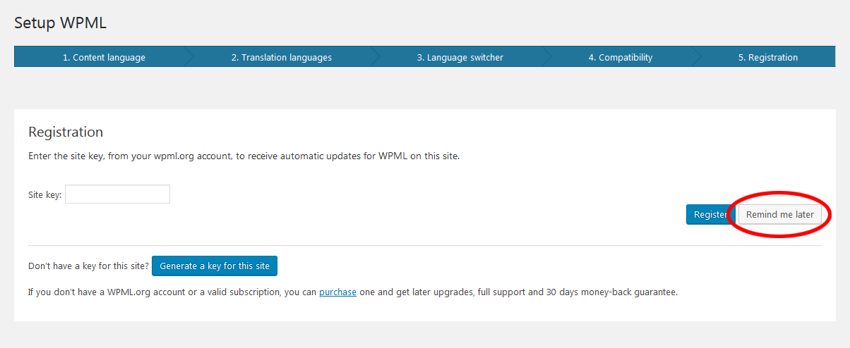 WPML Multilingual CMS 1
