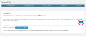 WPML Multilingual CMS 2
